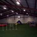 Dog Training Steel Building Arena