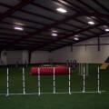 Cumming Steel Dog Training Arena